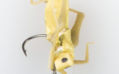 Grass Hopper #10 olive