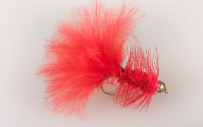 Wooley Bugger #10 light red